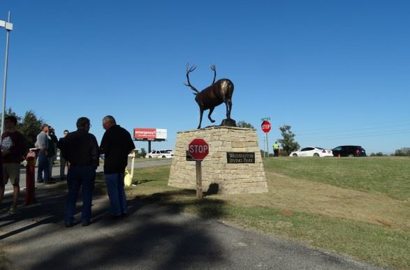 Elk statue from a distance